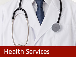 Health Services Graphic