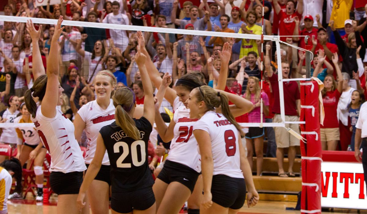 Volleyball players celebrating on the court