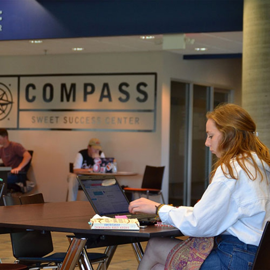 Students in COMPASS